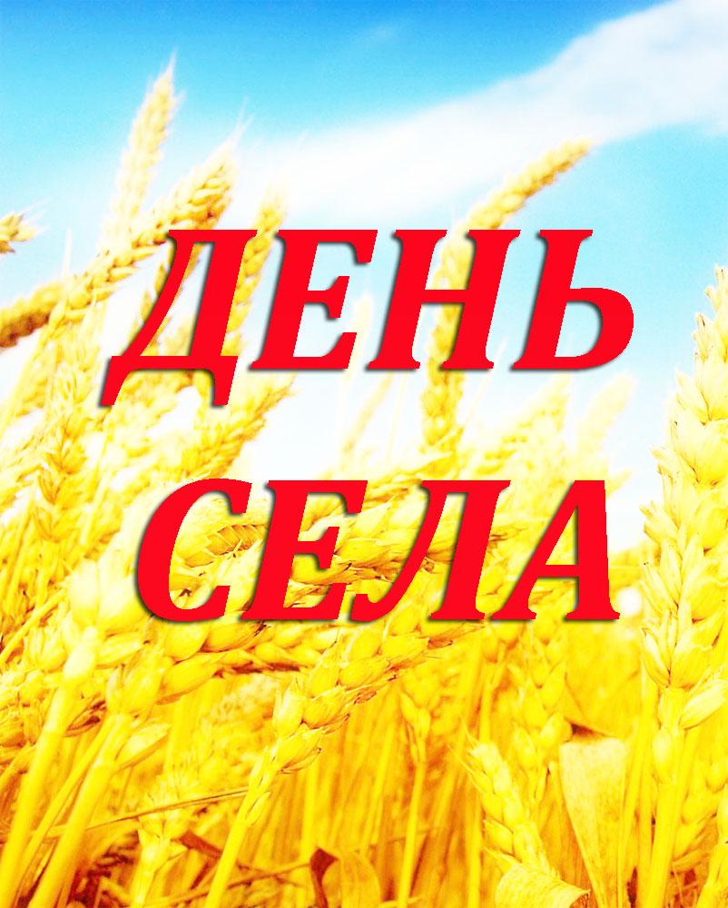 Поздравления на села